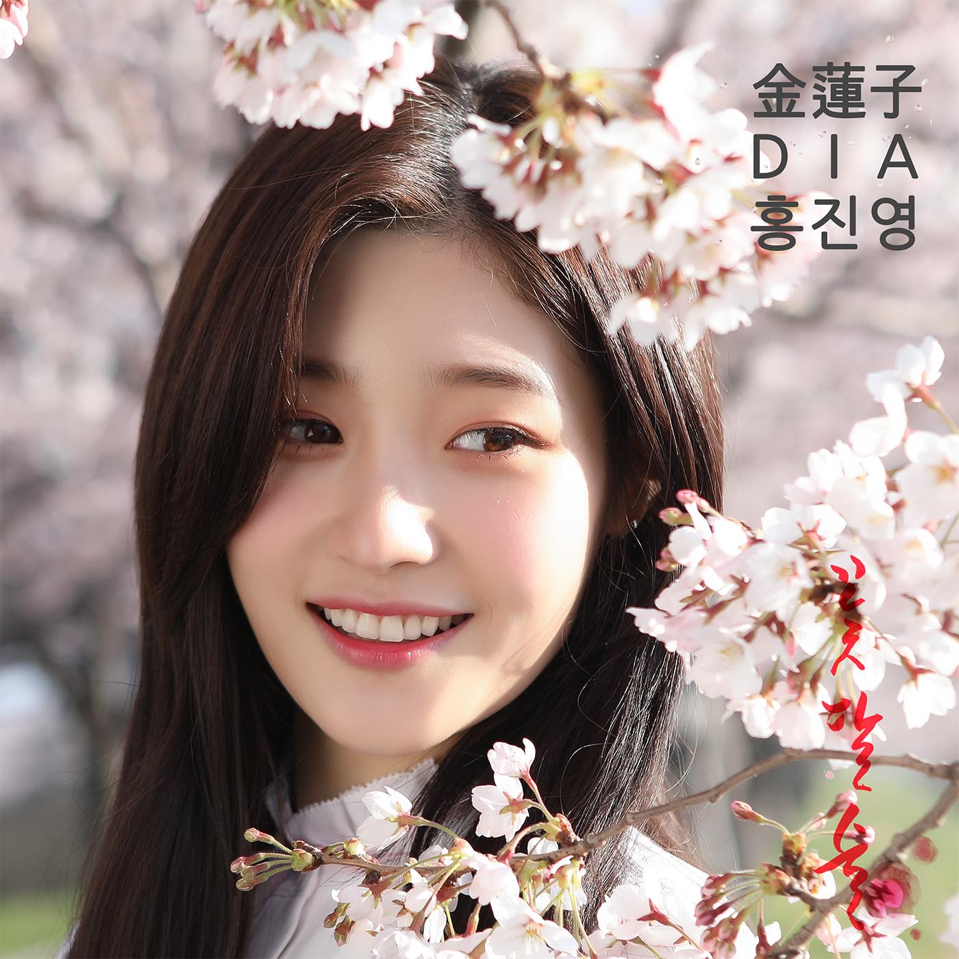 다이아 (DIA),홍진영,김연자-꽃, 달, 술